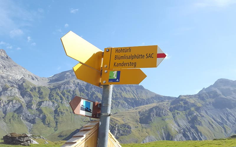 Via Alpina 2019 signpost