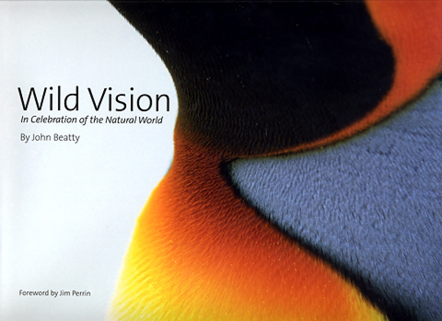 John Beatty's Wild Vision reviewed